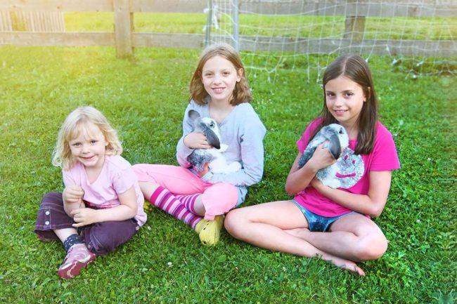Kinderparadies - Urlaub am Bauernhof - Nöglhof Radstadt