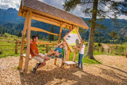 Alles Alm - Sommerurlaub & Wanderurlaub in Radstadt – Bauernhofurlaub in Radstadt am Familienbauernhof Nöglhof