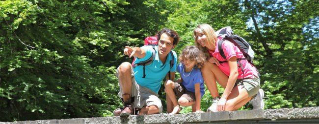Sommerurlaub & Wanderurlaub in Radstadt – Bauernhofurlaub in Radstadt am Familienbauernhof Nöglhof