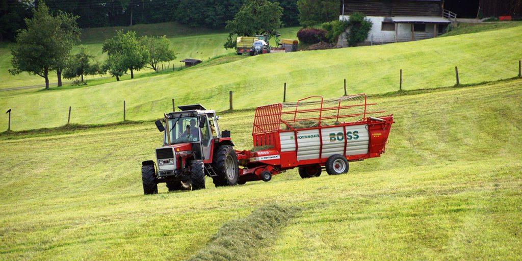 Urlaub am Bauernhof, Nöglhof mit Ferienwohnungen in Radstadt