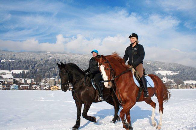 Winterreiten – Winterurlaub & Skiurlaub im Ski amadé - Bauernhof Nöglhof in Radstadt
